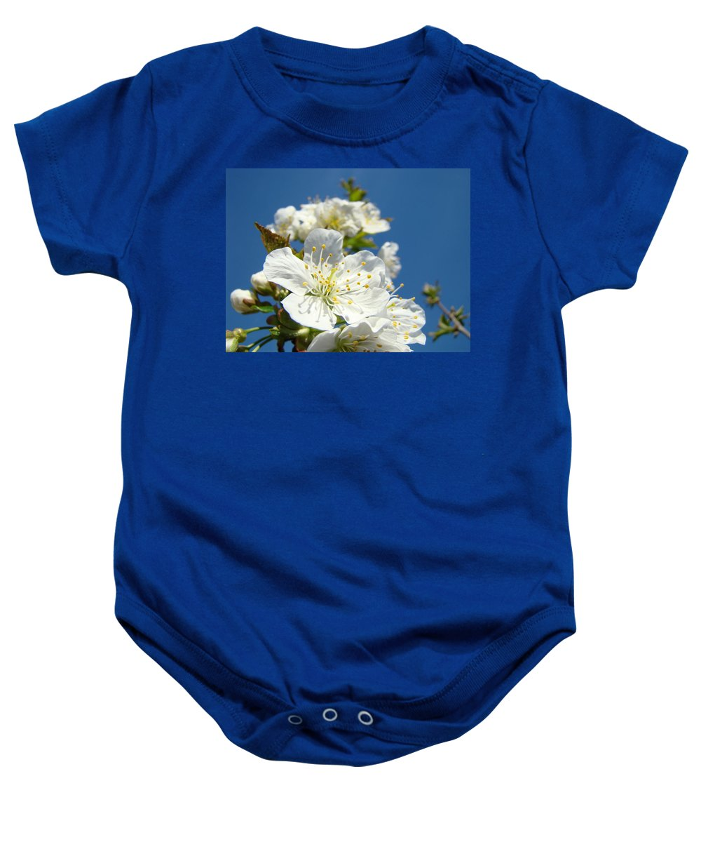 Blossom Baby Onesie featuring the photograph White Blossoms Art Prints Spring Tree Blossoms Canvas Baslee Troutman by Baslee Troutman