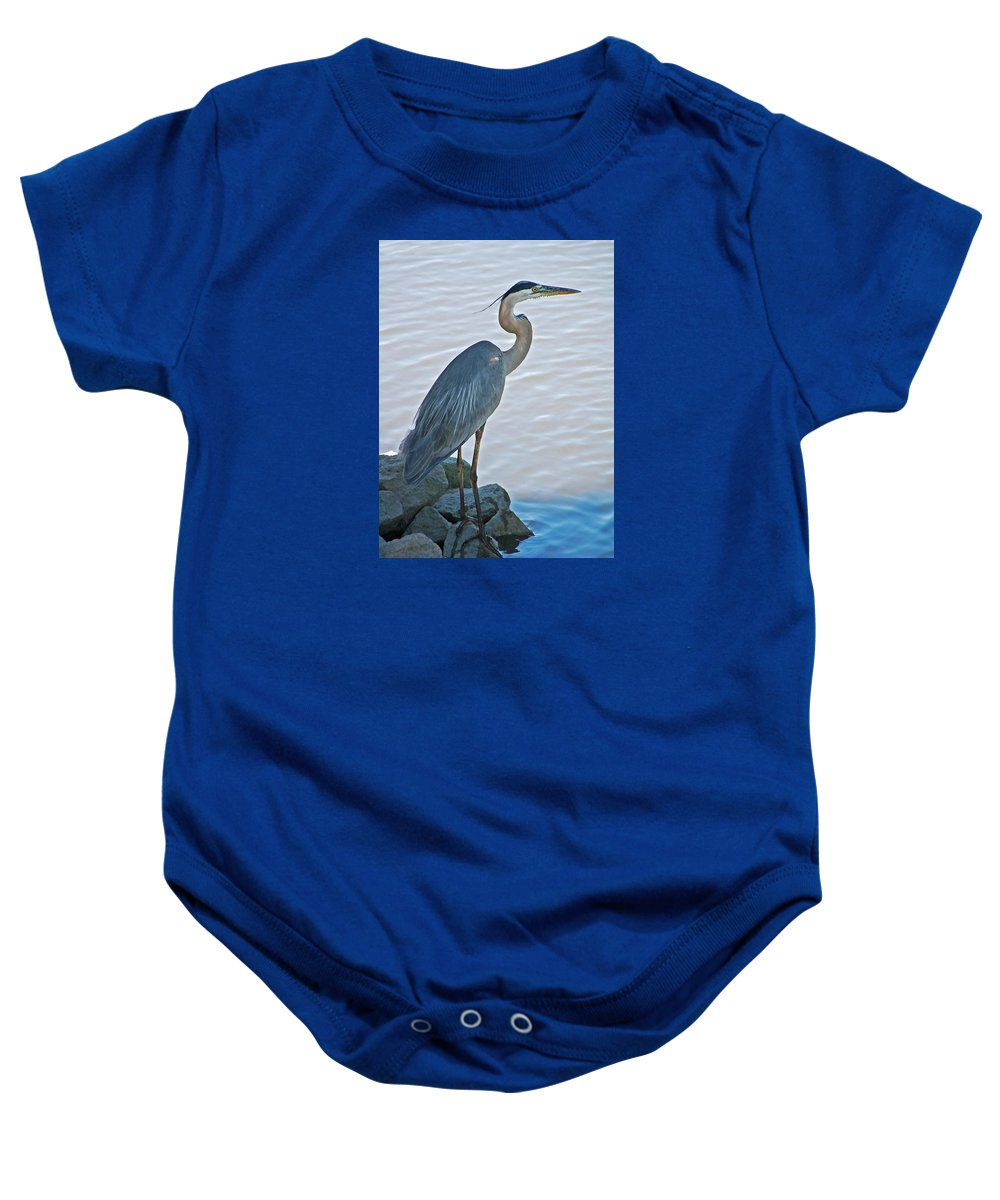 Great Blue Heron Baby Onesie featuring the photograph Great Blue Heron Portrait by Suzanne Gaff