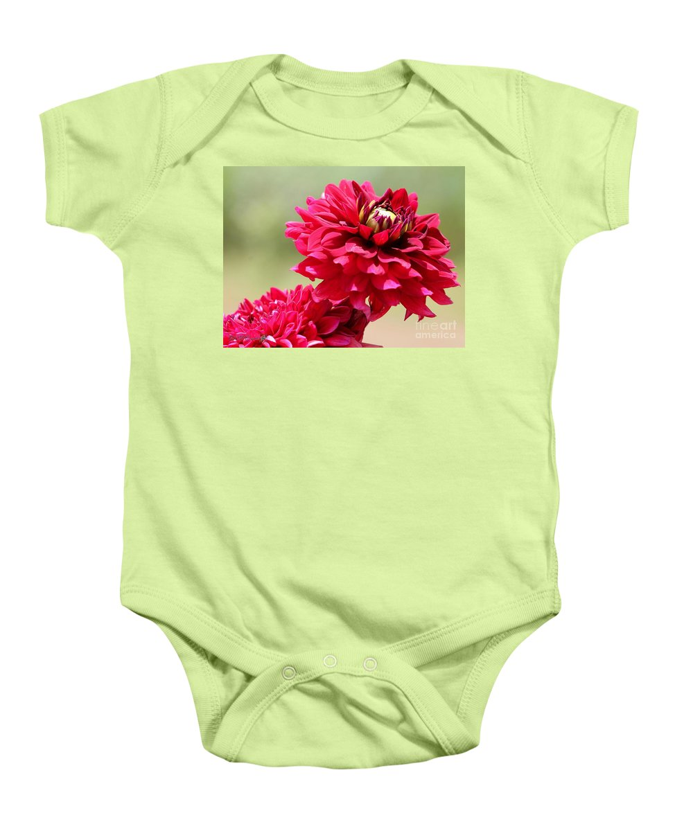 Mccombie Baby Onesie featuring the photograph Dahlia Named Caproz Jerry Garcia by J McCombie