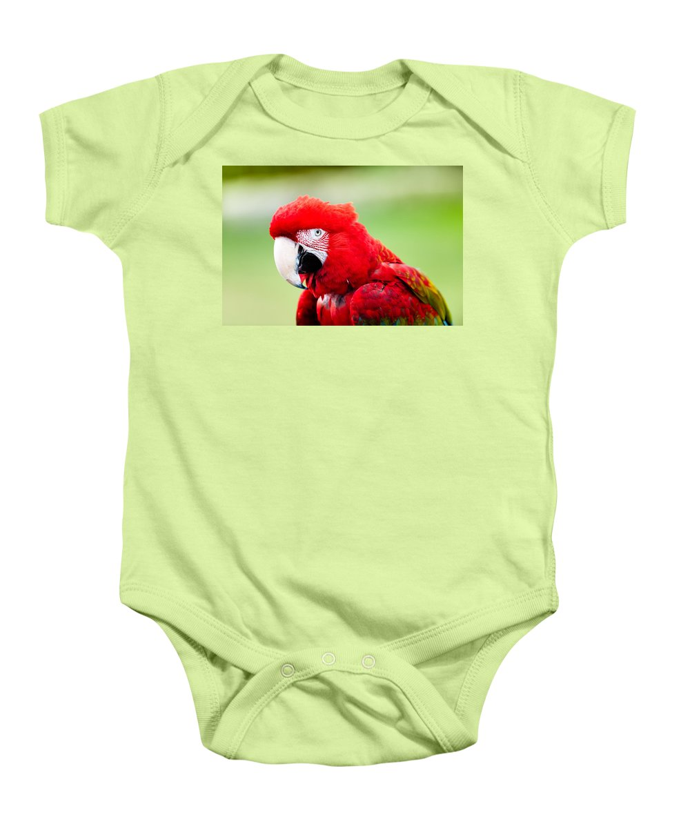 Parrot Baby Onesie featuring the photograph Parrot by Sebastian Musial