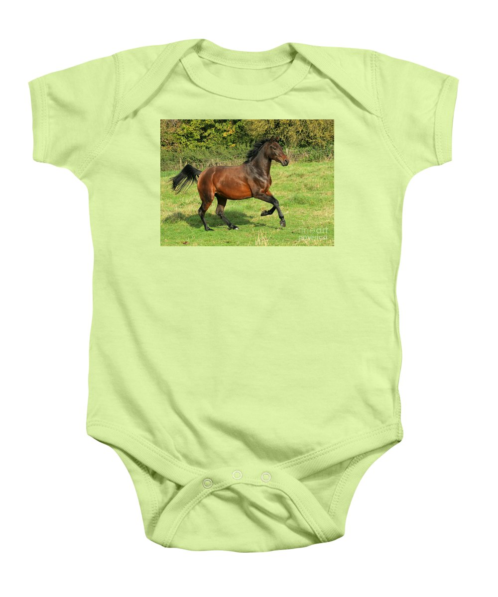 Horse Baby Onesie featuring the photograph Take-off by Angel Ciesniarska