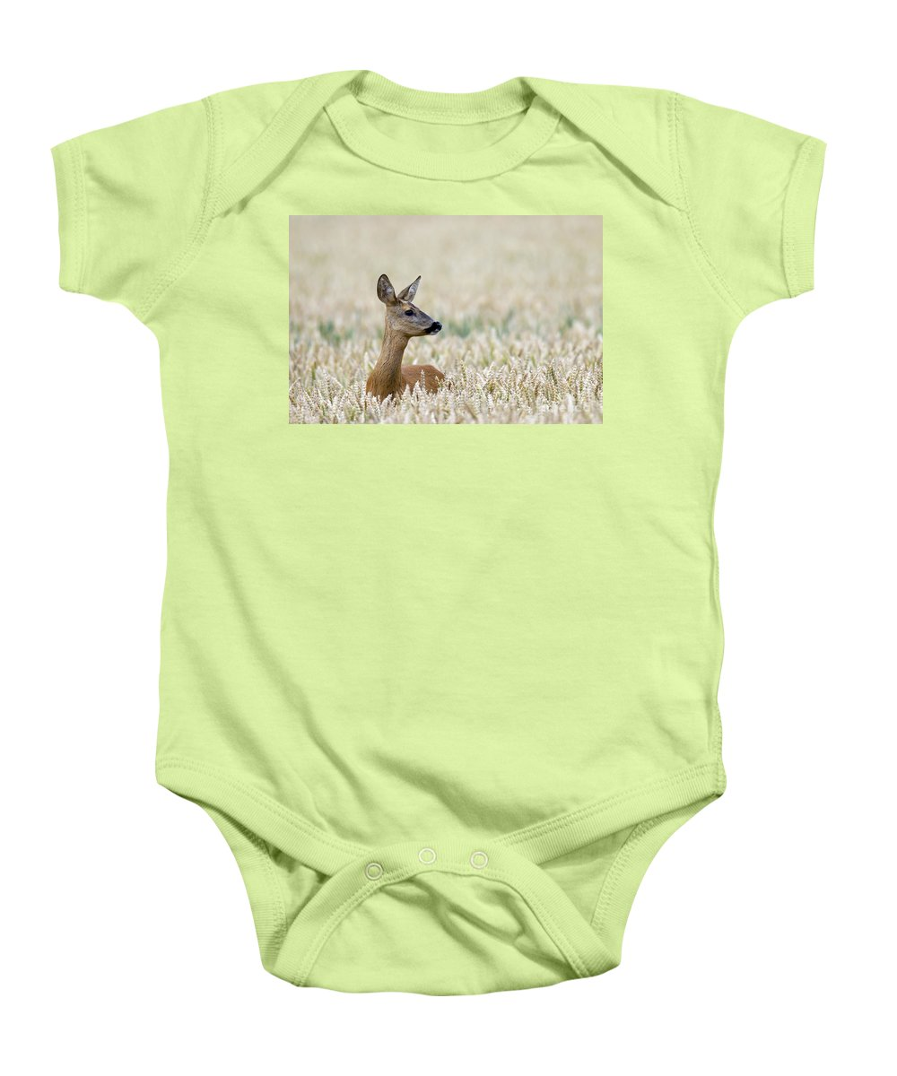 Roe Deer Baby Onesie featuring the photograph 120425p010 by Arterra Picture Library