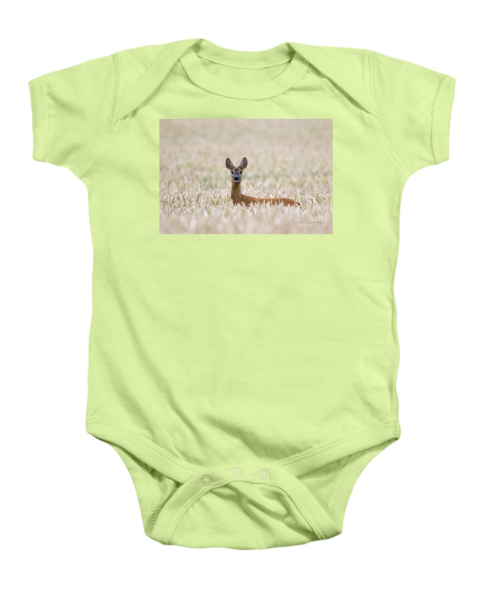 Roe Deer Baby Onesie featuring the photograph 120425p012 by Arterra Picture Library