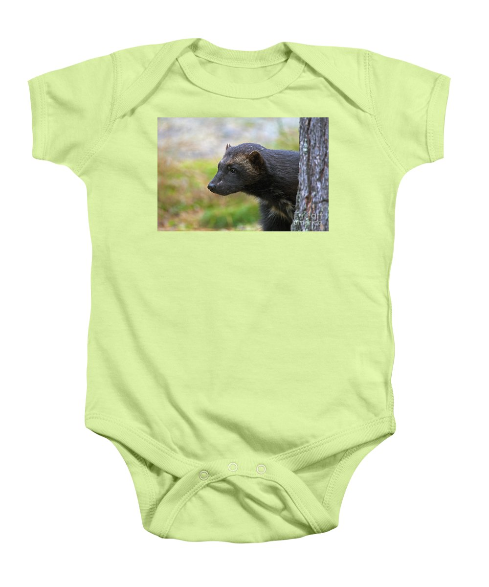 Wolverine Baby Onesie featuring the photograph 121213p352 by Arterra Picture Library
