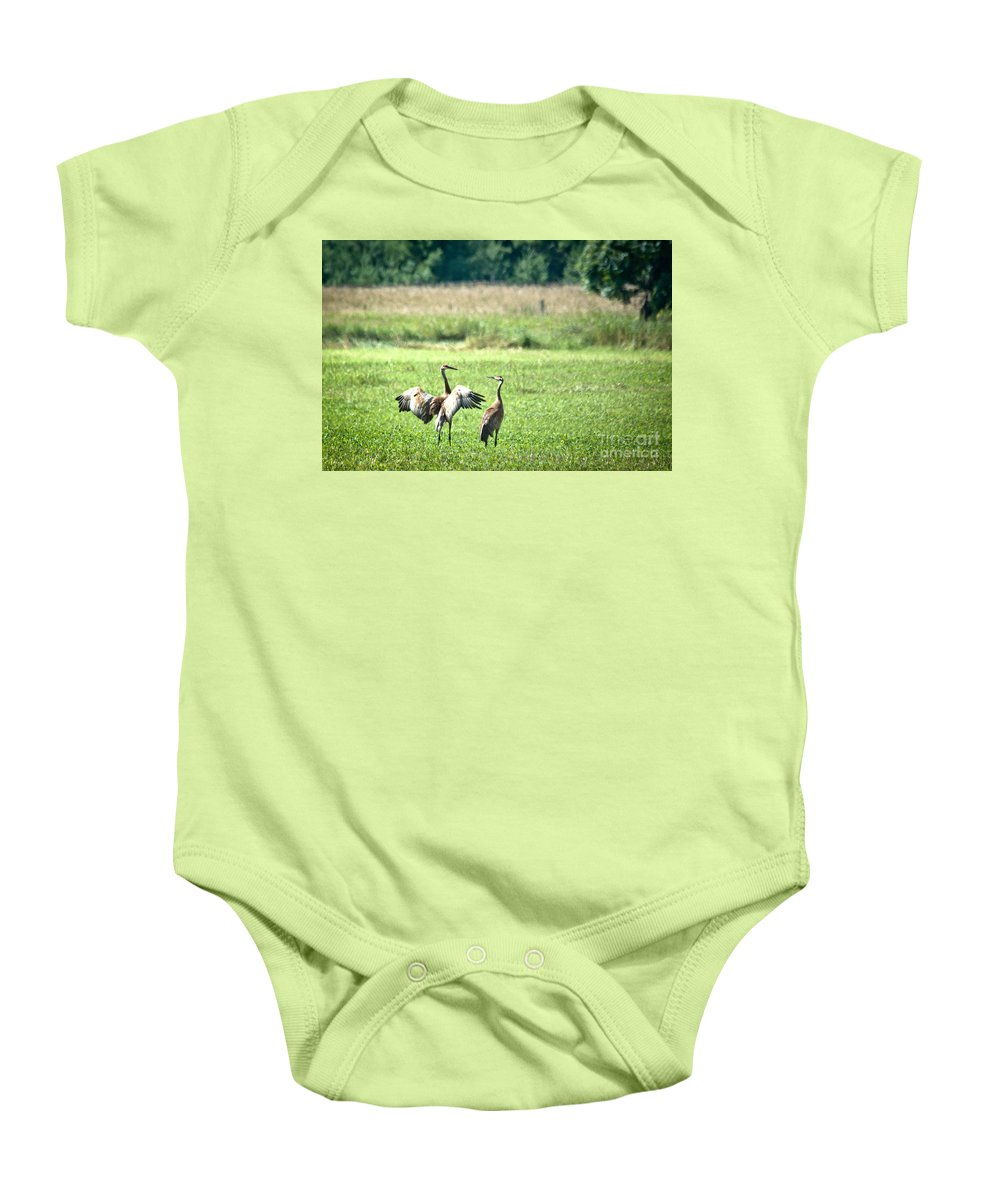 Sandhill Cranes Baby Onesie featuring the photograph It Was This Big by Cheryl Baxter
