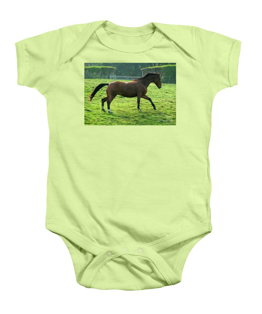 Horse Baby Onesie featuring the photograph Bay Horse by Angel Tarantella