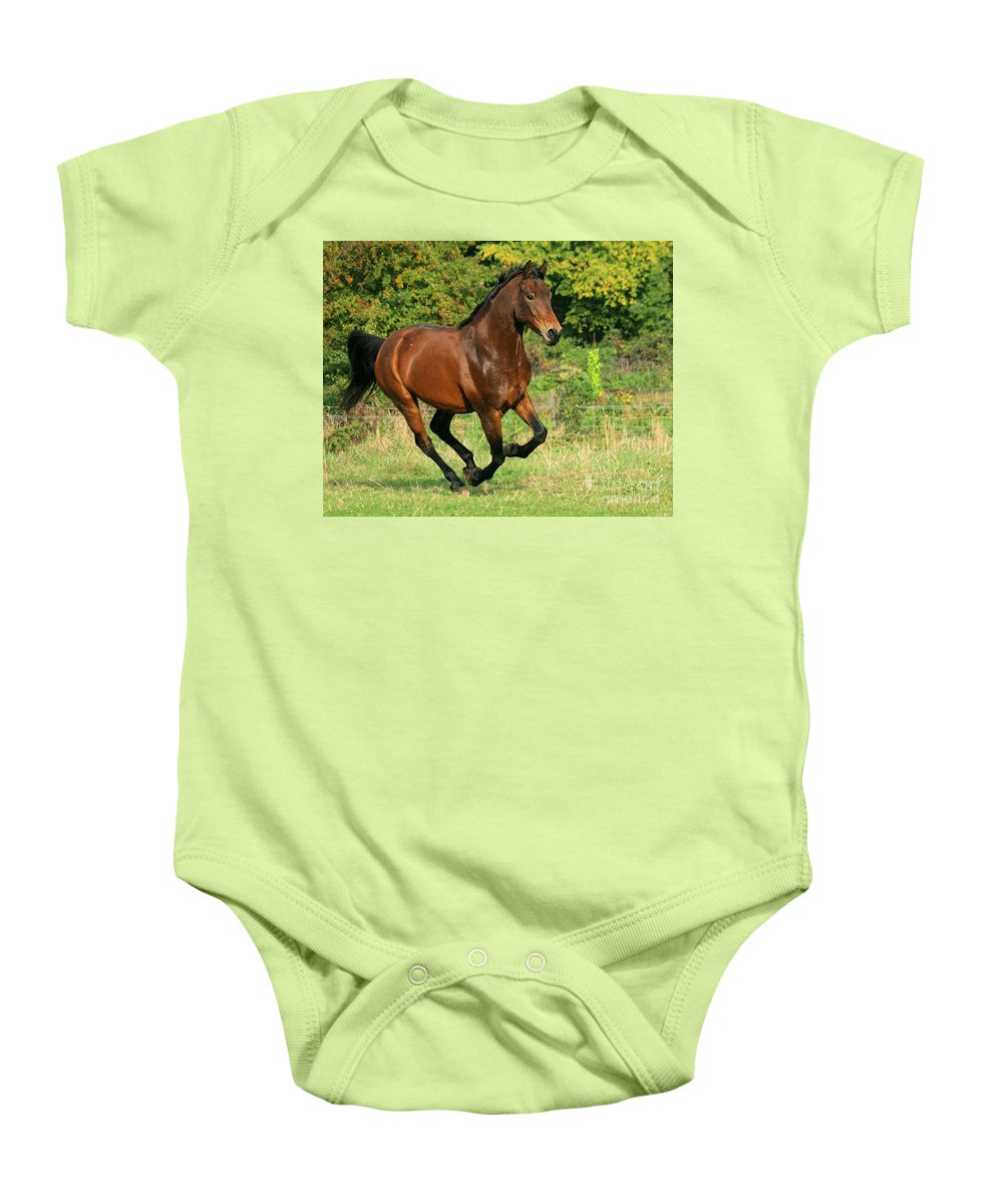 Horse Baby Onesie featuring the photograph Running Free by Angel Tarantella