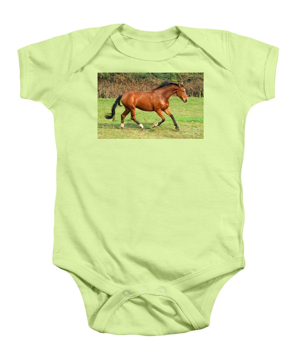 Horse Baby Onesie featuring the photograph The Bay Horse by Angel Tarantella