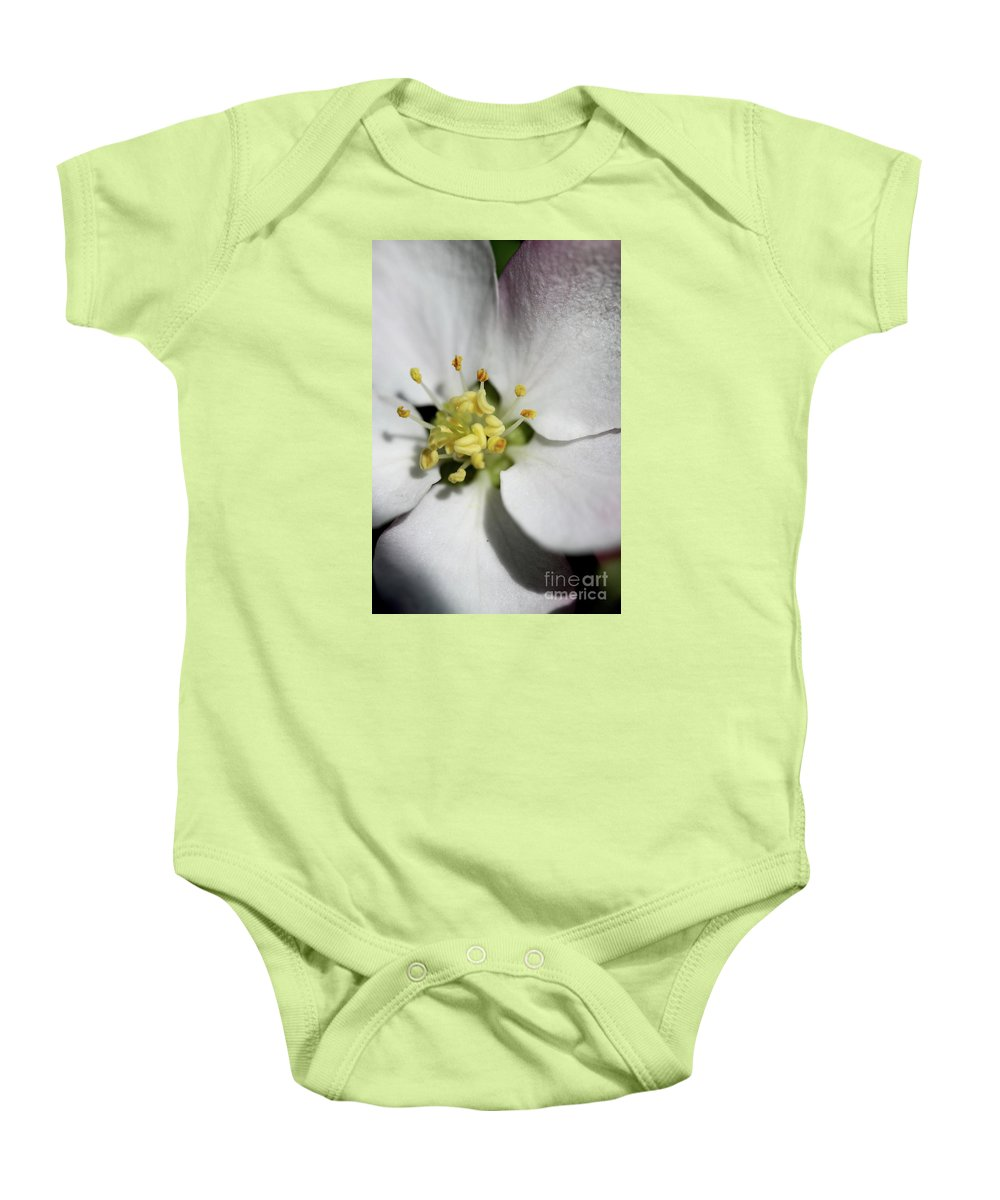 Appleblossom Baby Onesie featuring the photograph Appleblossom Macro by Christiane Schulze Art And Photography