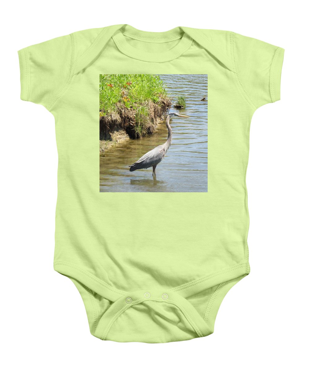Great Blue Heron (ardea Herodias) Baby Onesie featuring the photograph Blue Heron by Eric Noa