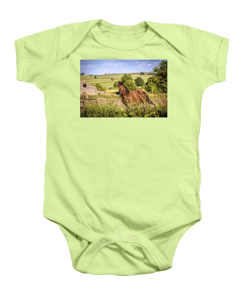 Horse Baby Onesie featuring the photograph Countryside Horse by Amanda Elwell