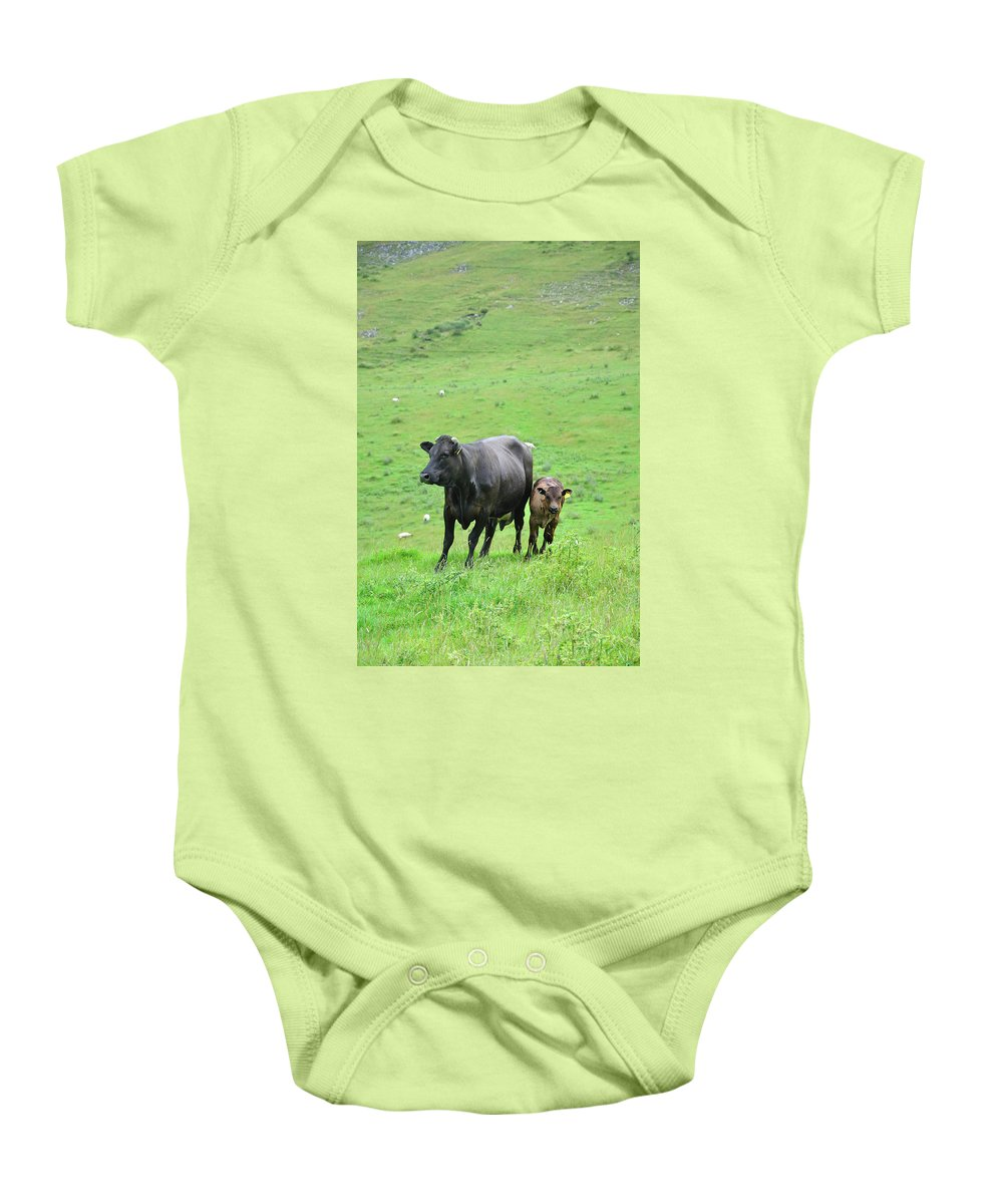 Grass Baby Onesie featuring the photograph Cow With Calf On Thorpe Hillside by Rod Johnson