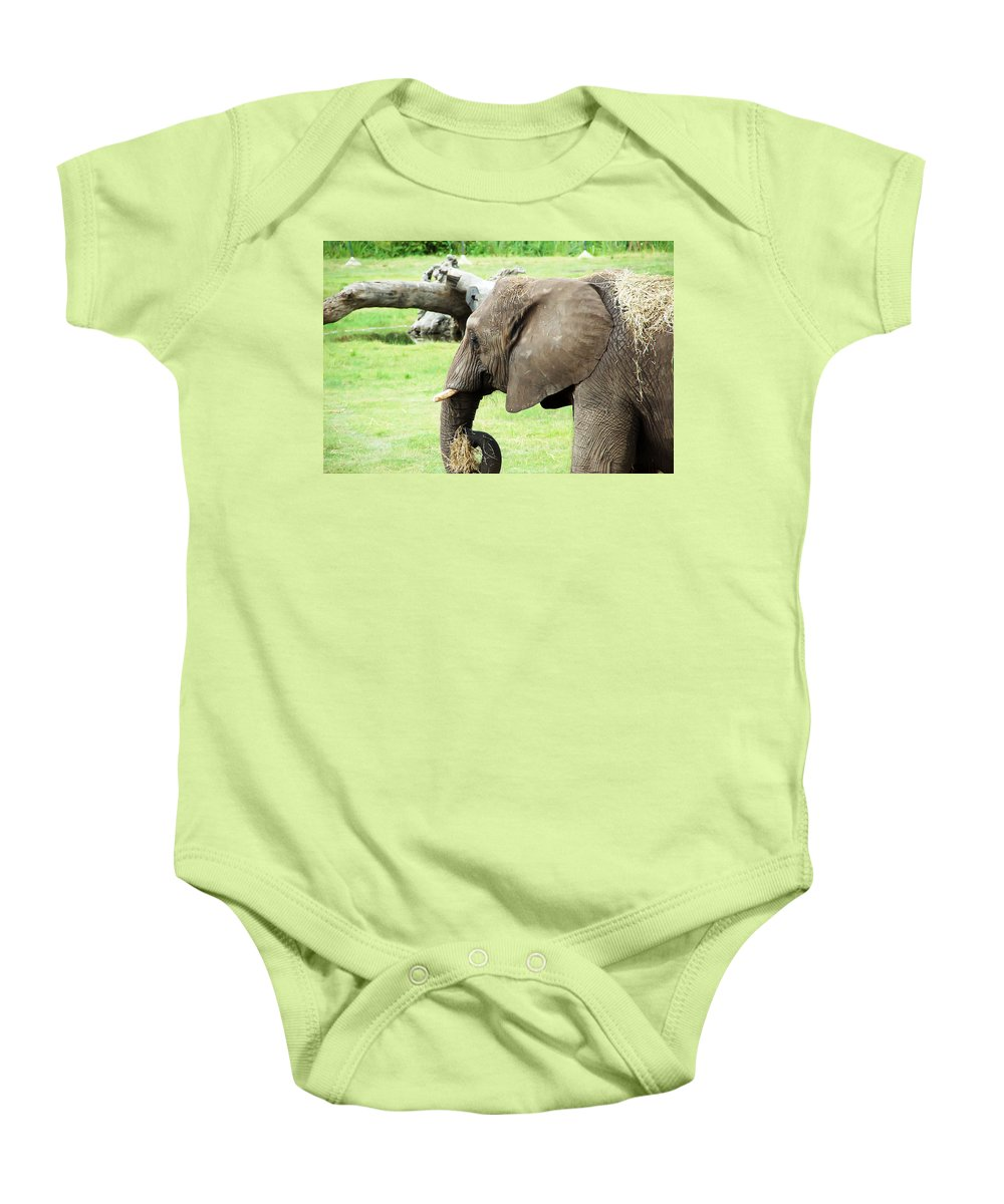 Elephant Baby Onesie featuring the photograph Elephant by Aimee L Maher ALM GALLERY