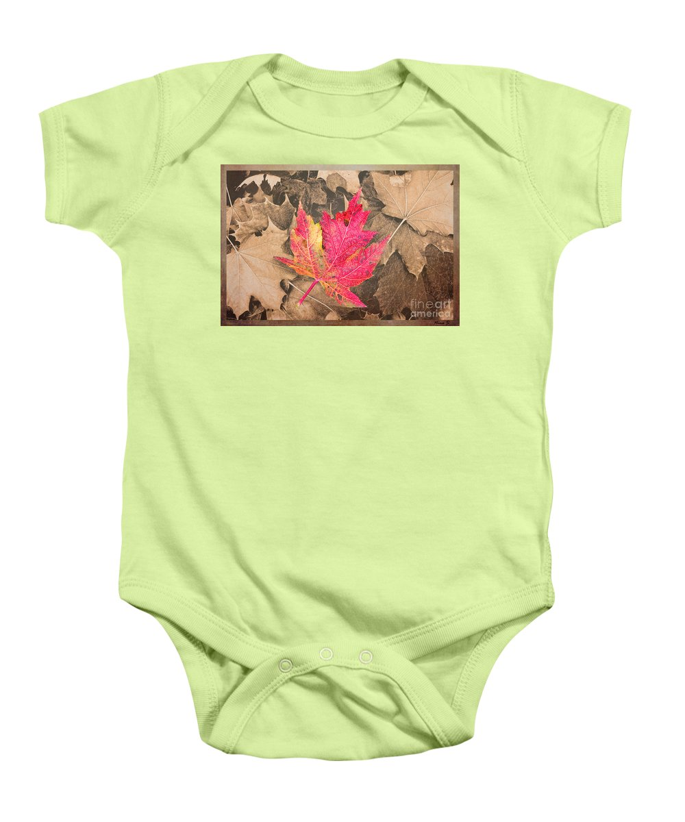 Leaves Baby Onesie featuring the photograph Frozen In Time by Nina Silver