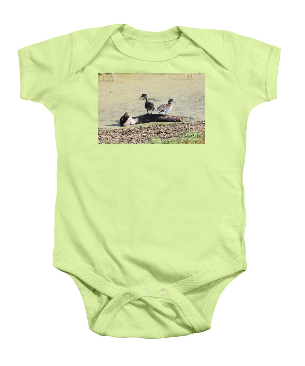 Wood Duck Baby Onesie featuring the photograph Immature Wood Ducks by Lori Tordsen