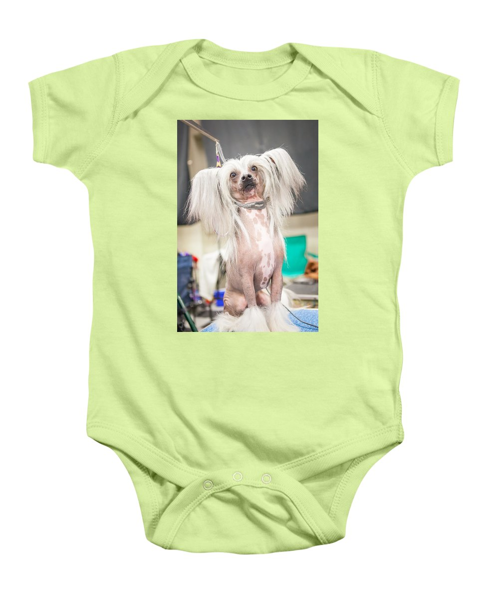 Dog Baby Onesie featuring the photograph Just Gorgeous by Lance Pecchia