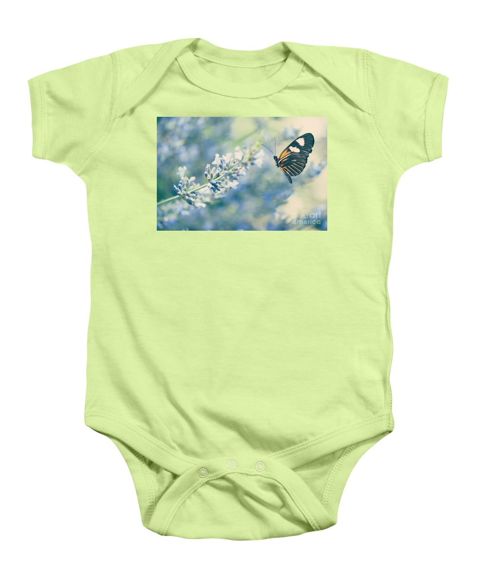 Antennae Baby Onesie featuring the photograph Lavender And The Butterfly by Juli Scalzi