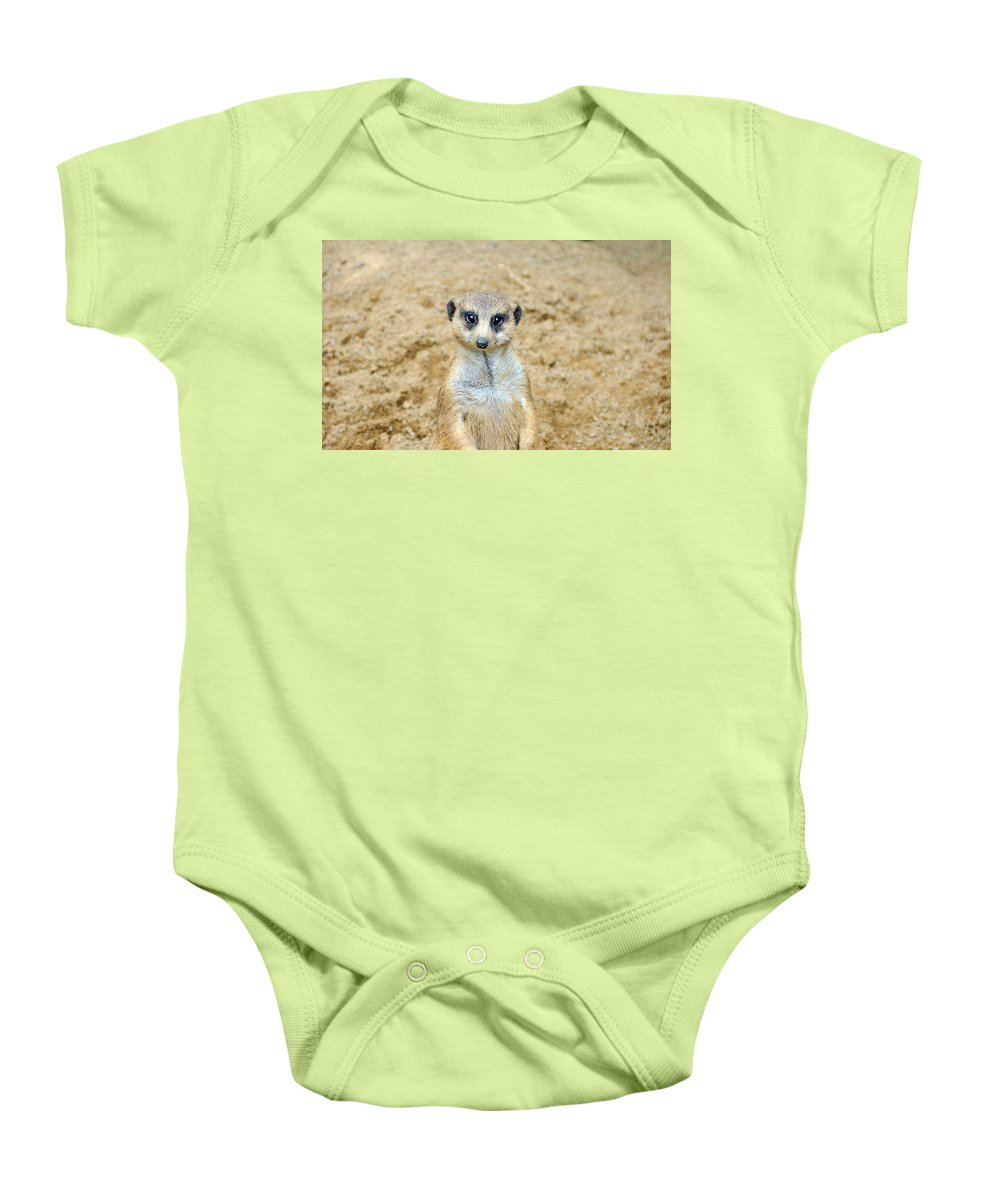 Meerkat Baby Onesie featuring the photograph Meerkat by Aimee L Maher ALM GALLERY
