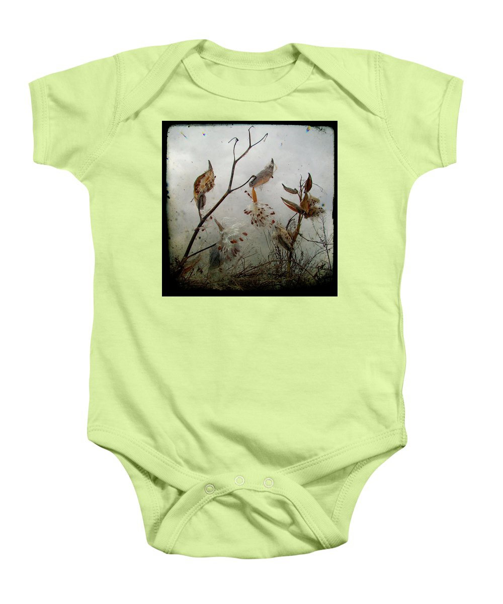 Milkweed Baby Onesie featuring the photograph Milky Milkweed by Gothicrow Images