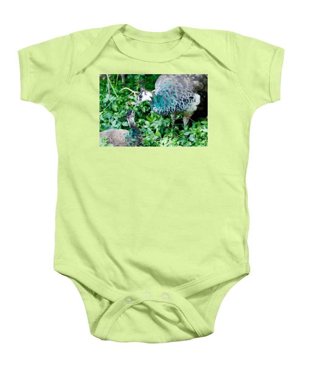 Baby Onesie featuring the photograph Pecocks by Optical Playground By MP Ray