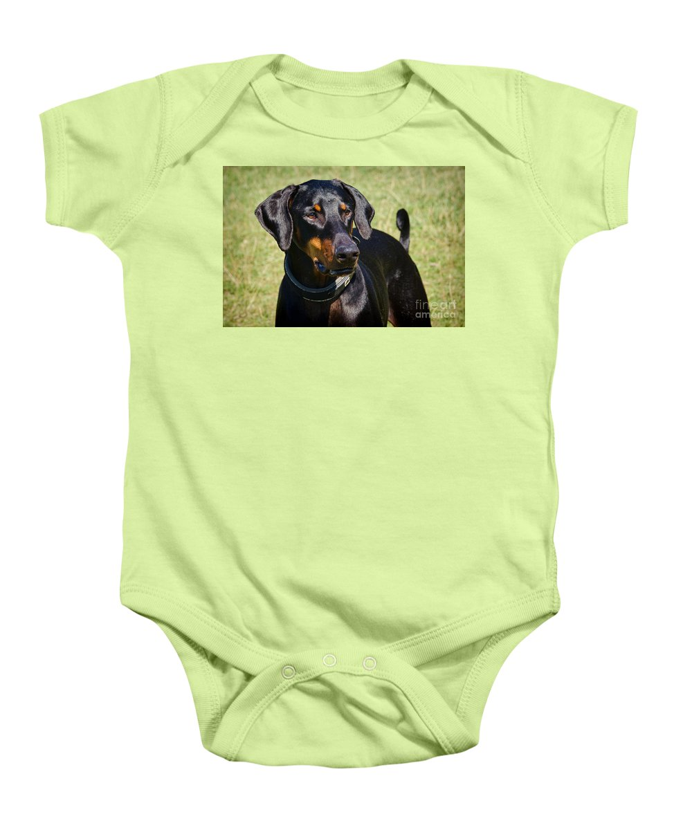Doberman Baby Onesie featuring the photograph Portrait Of A Doberman by Susie Peek