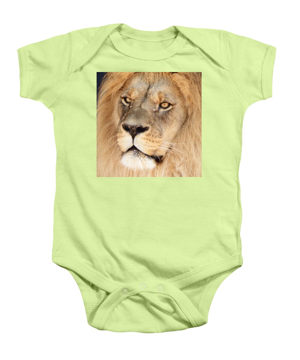 Lion Baby Onesie featuring the photograph Portrait Of The Lion by David G Paul