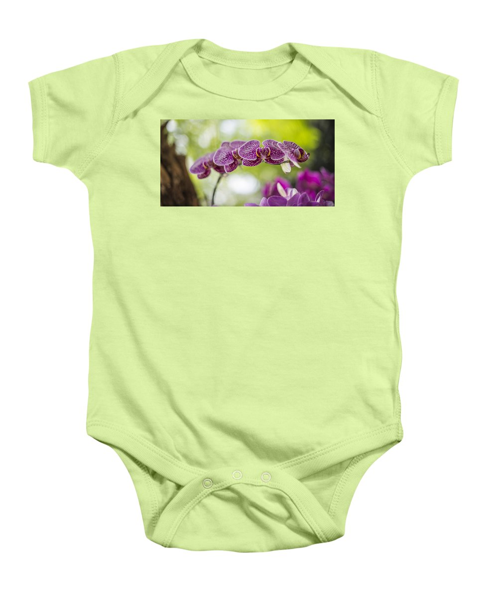 Botanical Gardens Baby Onesie featuring the photograph Purple by Theodore Jones