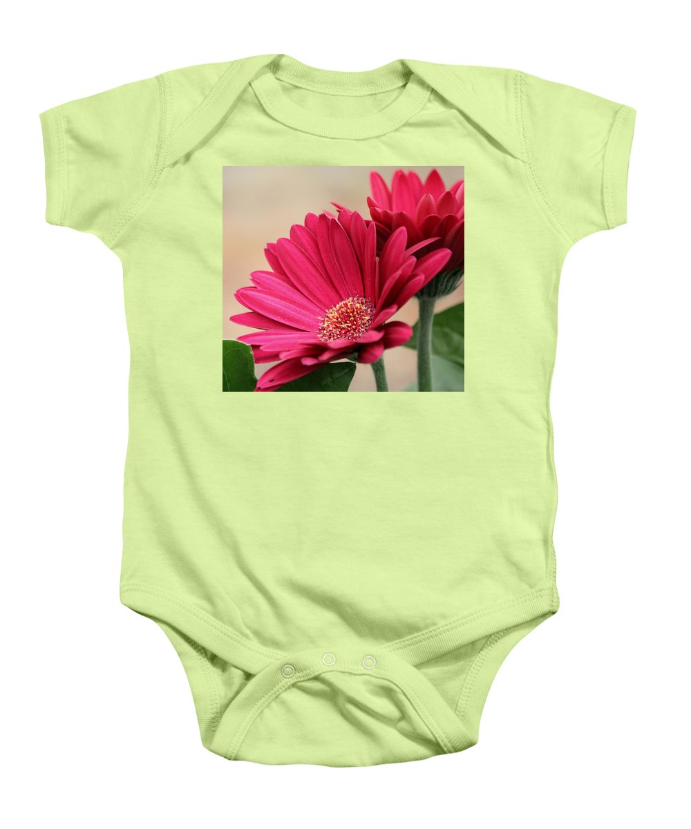 Flower Baby Onesie featuring the photograph Red Gerber Daisies by Jeanette C Landstrom
