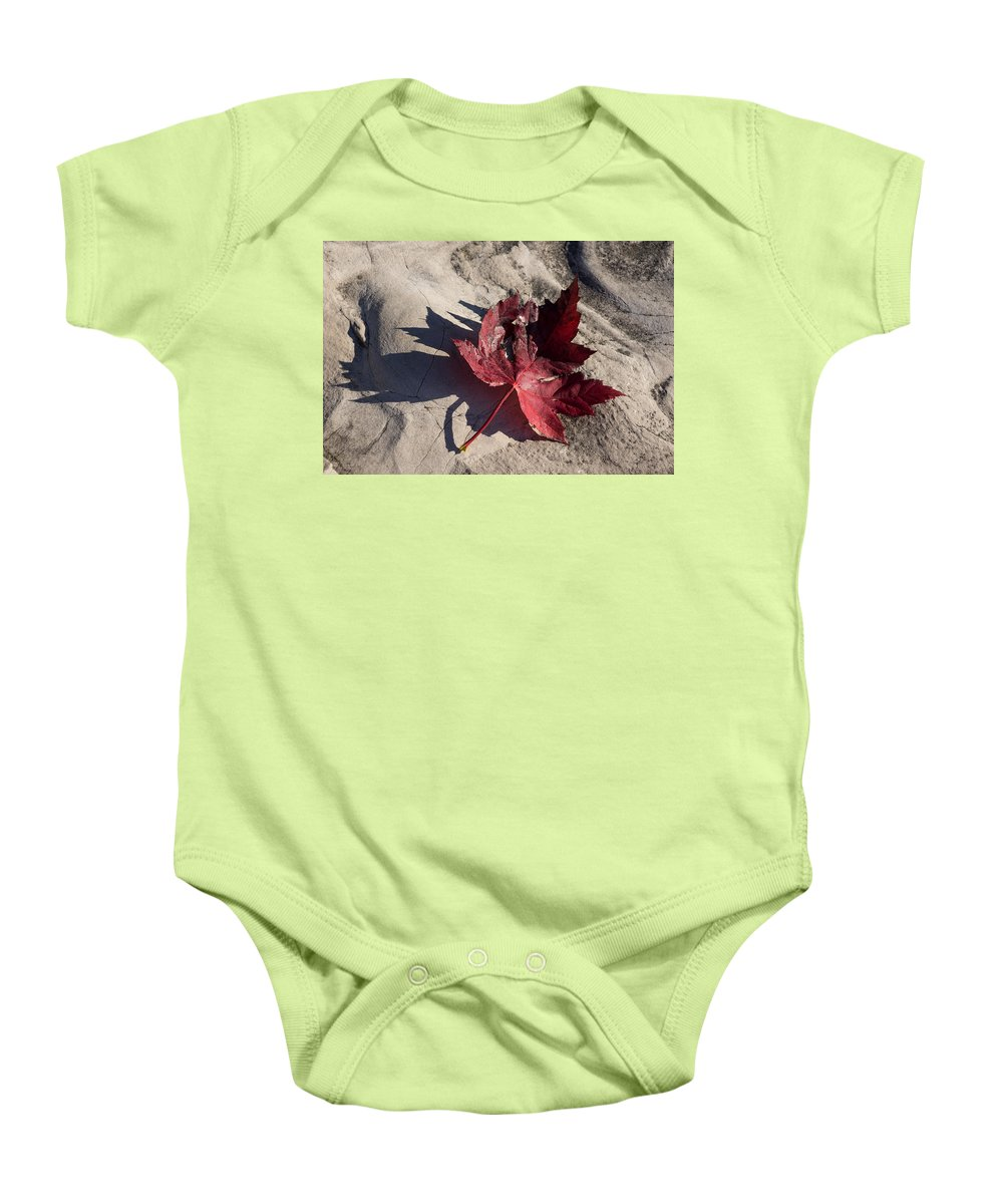 Maple Leaf Baby Onesie featuring the photograph Reds And Purples - Deep Red Maple Leaf And Its Shadow by Georgia Mizuleva