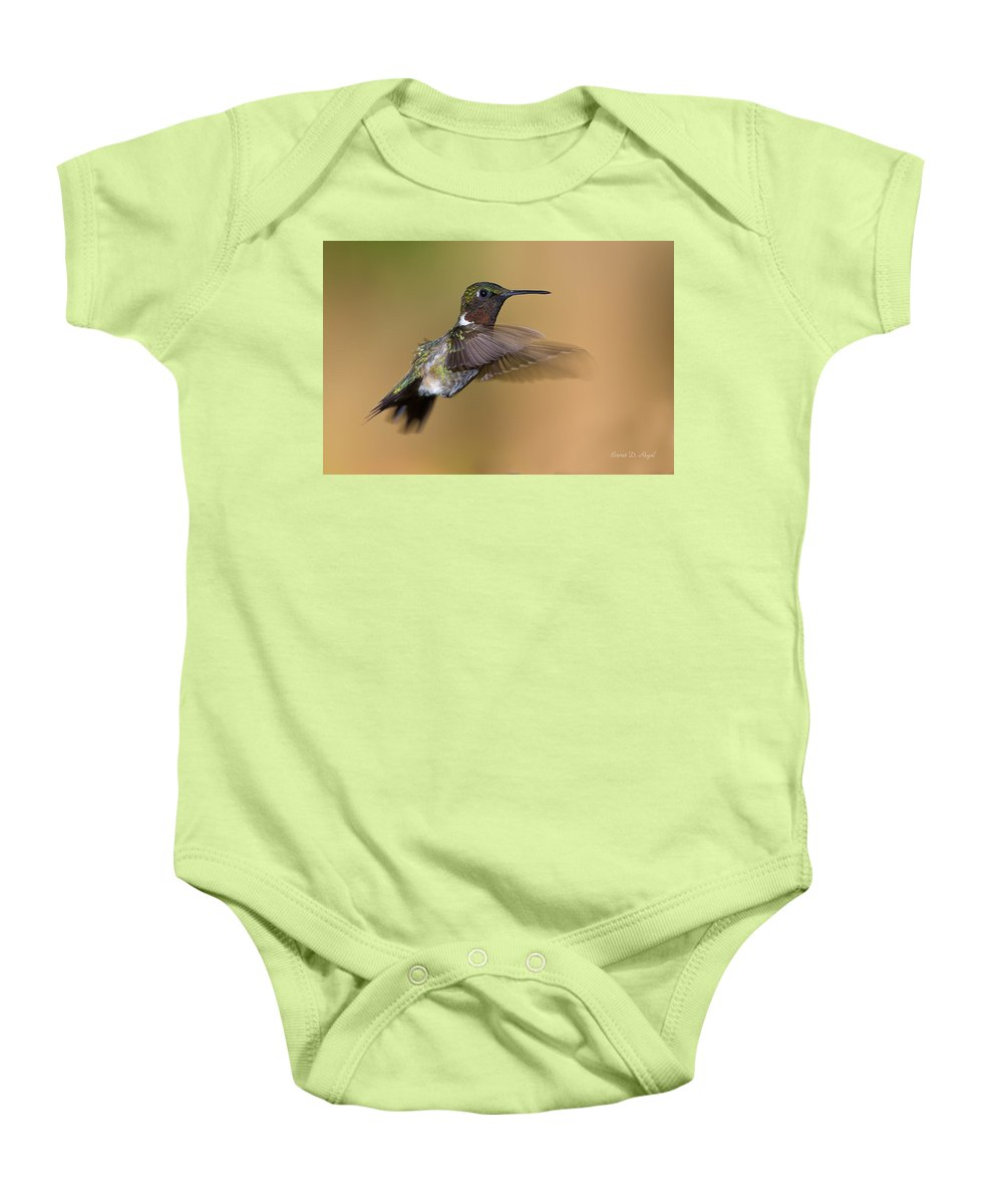 Hummingbird Baby Onesie featuring the photograph Ruby-throated Hummingbird by Everet Regal
