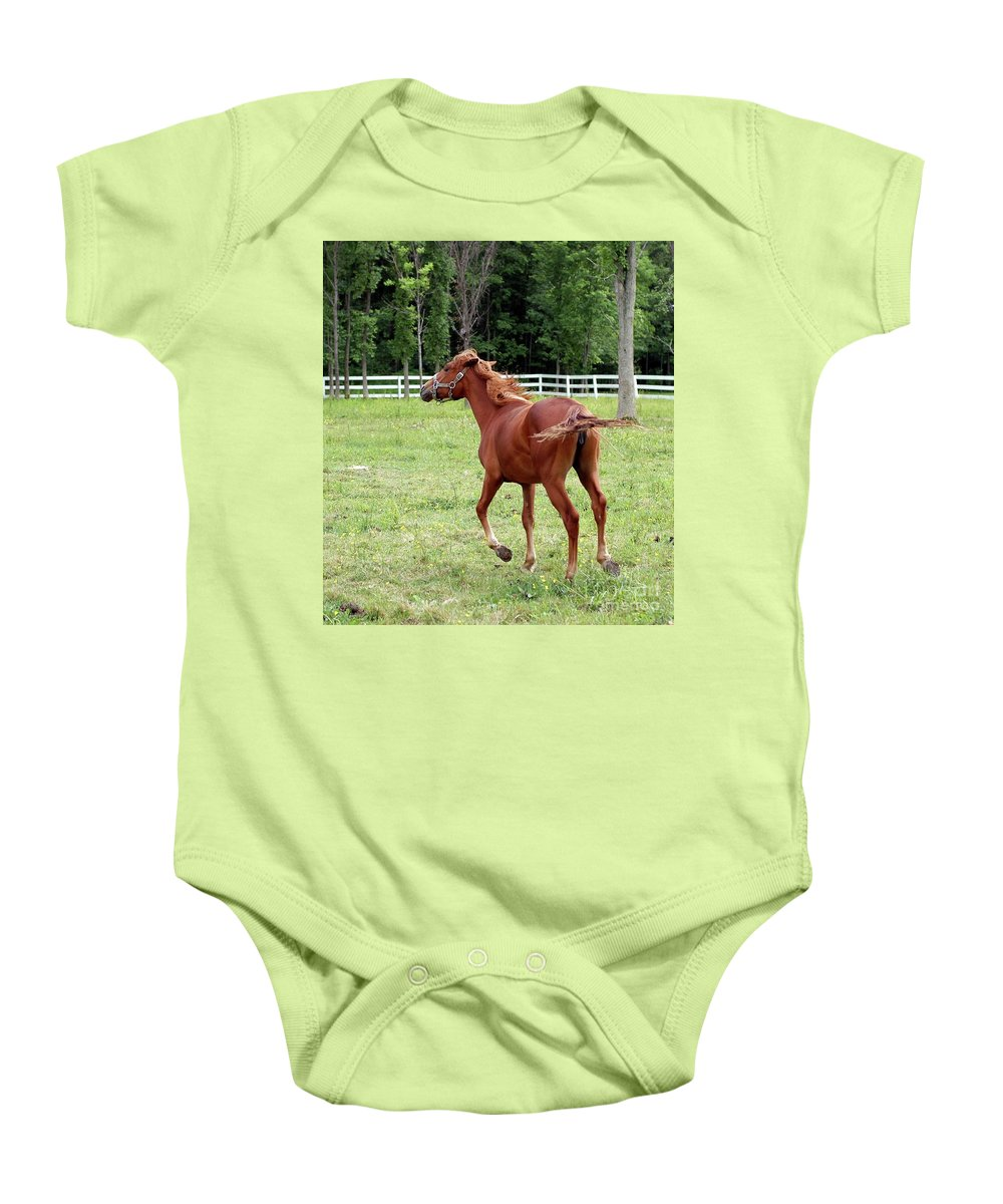 Horse Baby Onesie featuring the photograph Running In The Breeze by Kathleen Struckle