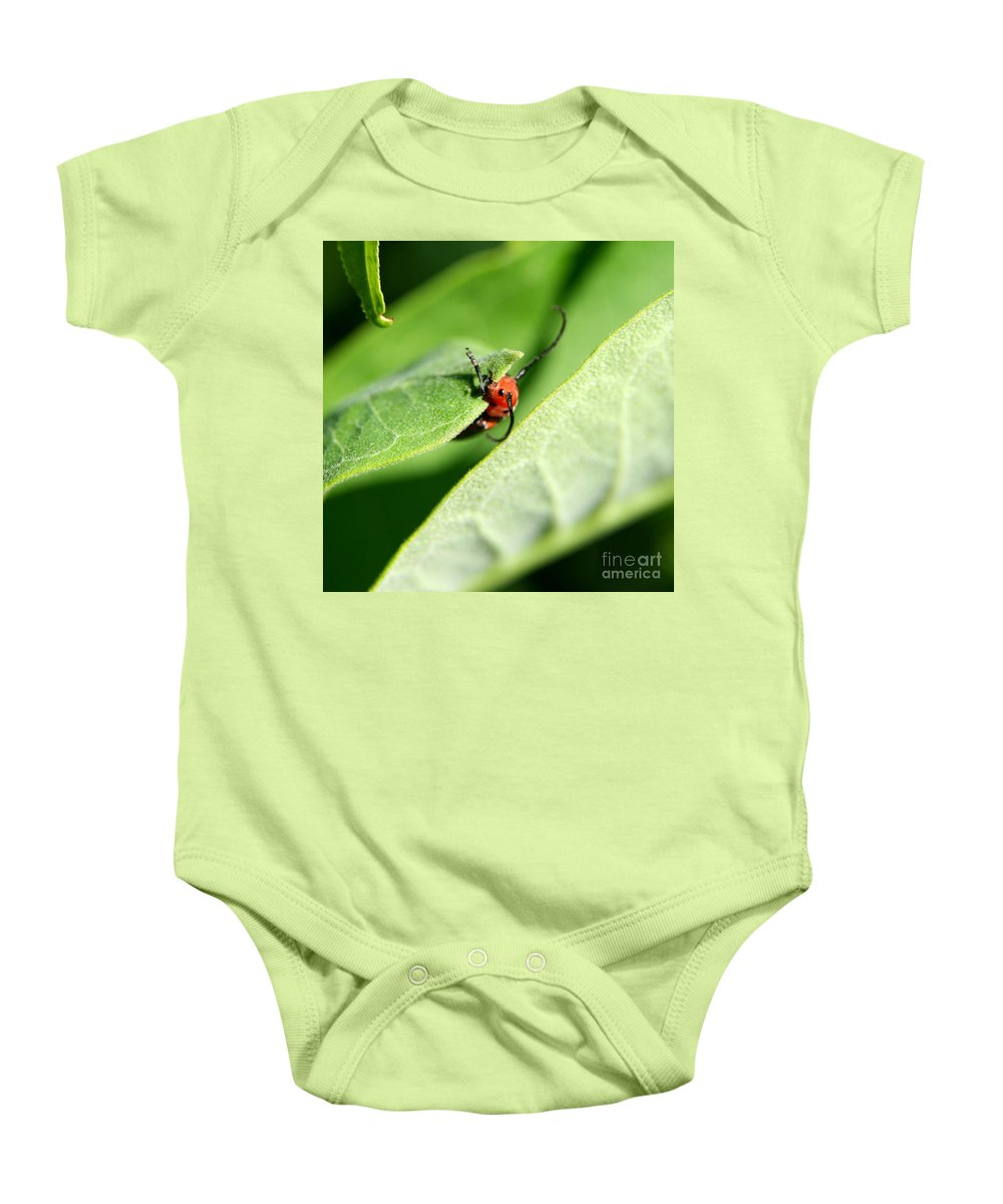 Insect Baby Onesie featuring the photograph Summer Snack by Neal Eslinger