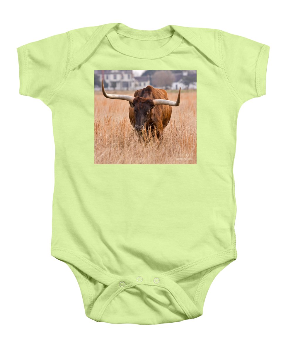 Animal Baby Onesie featuring the photograph Texas Longhorn by Louise Heusinkveld