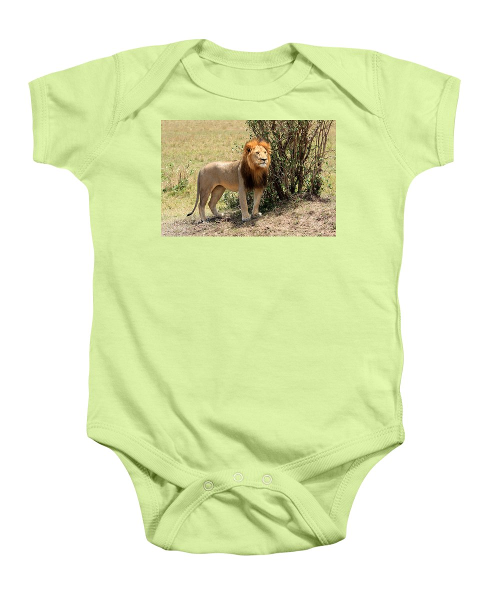 Africa Baby Onesie featuring the photograph King Of The Savannah by Aidan Moran