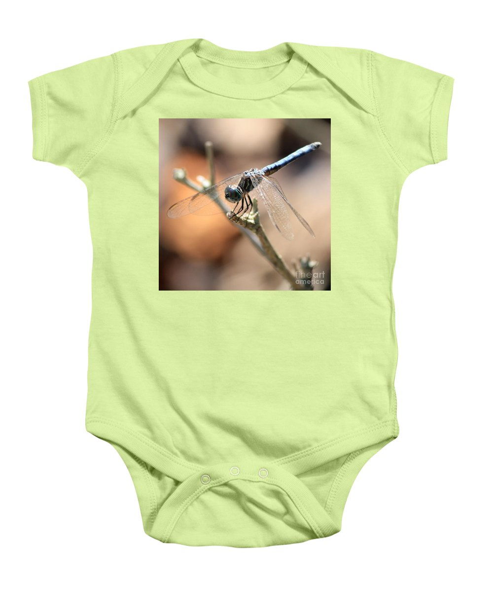 Dragonfly Baby Onesie featuring the photograph Tired Dragonfly Square by Carol Groenen