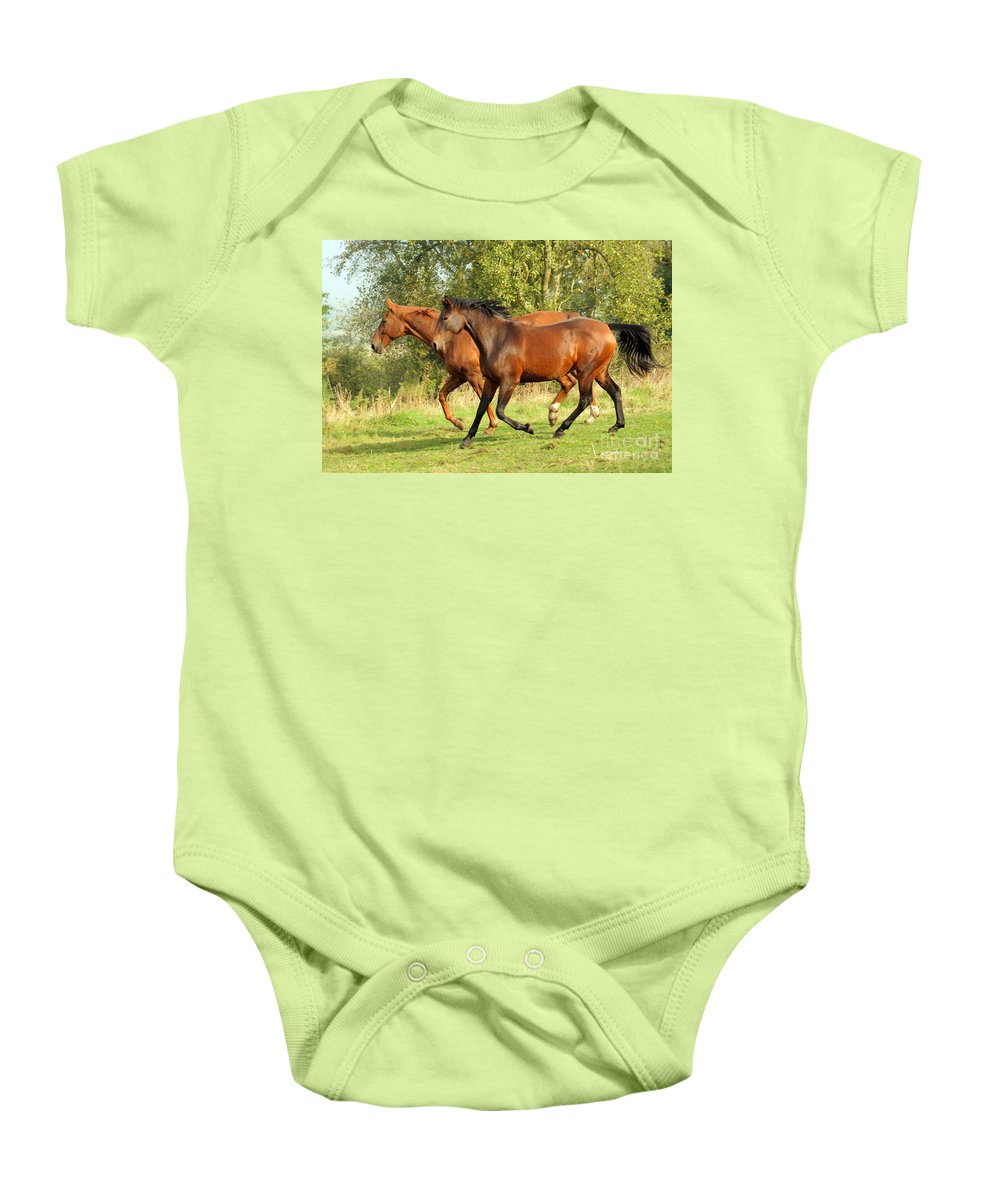 Horse Baby Onesie featuring the photograph Together Now by Angel Ciesniarska