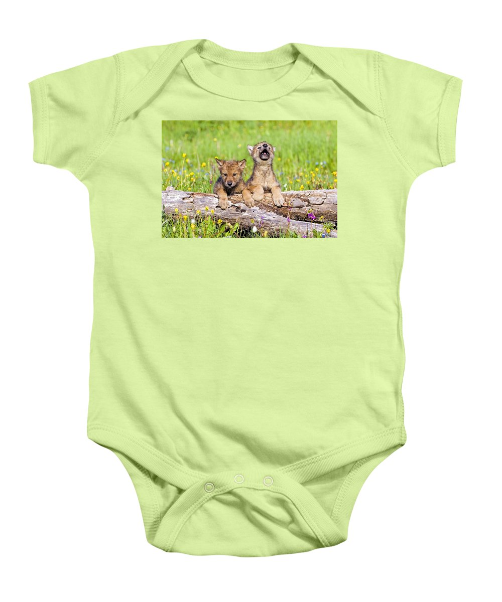 Outdoors Baby Onesie featuring the photograph Wolf Cubs On Log by John Pitcher