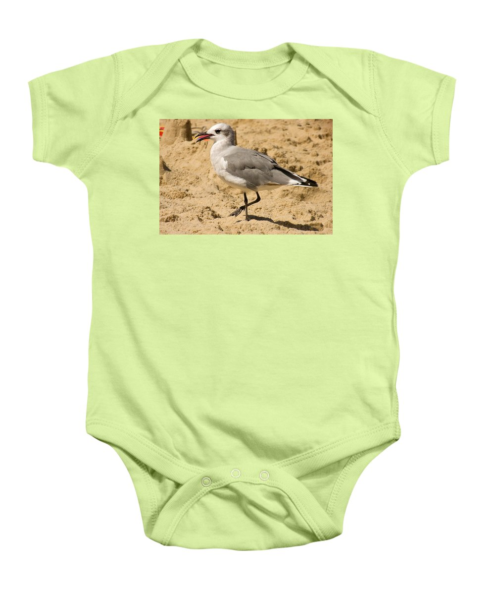 Seagull Baby Onesie featuring the photograph A Bird Of Many Colors by Trish Tritz