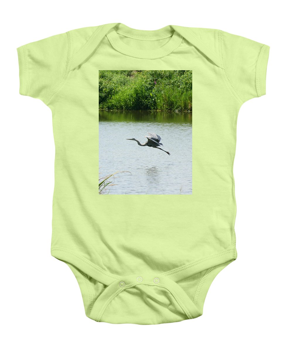 Great Blue Heron Baby Onesie featuring the photograph A Great Blue Heron Landing by Neal Eslinger
