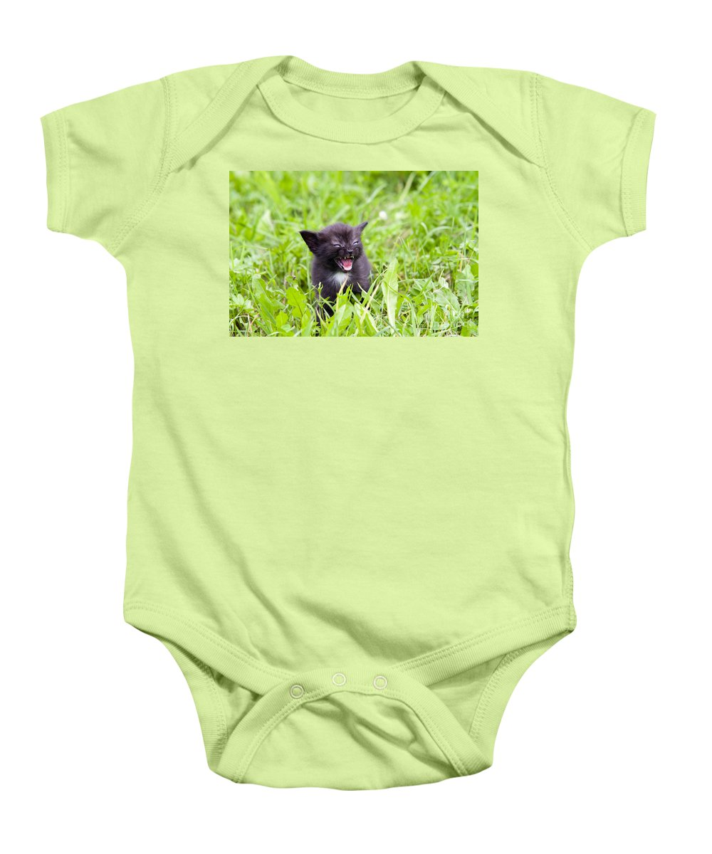 Adorable Baby Onesie featuring the photograph Angry Kitten by Michal Boubin