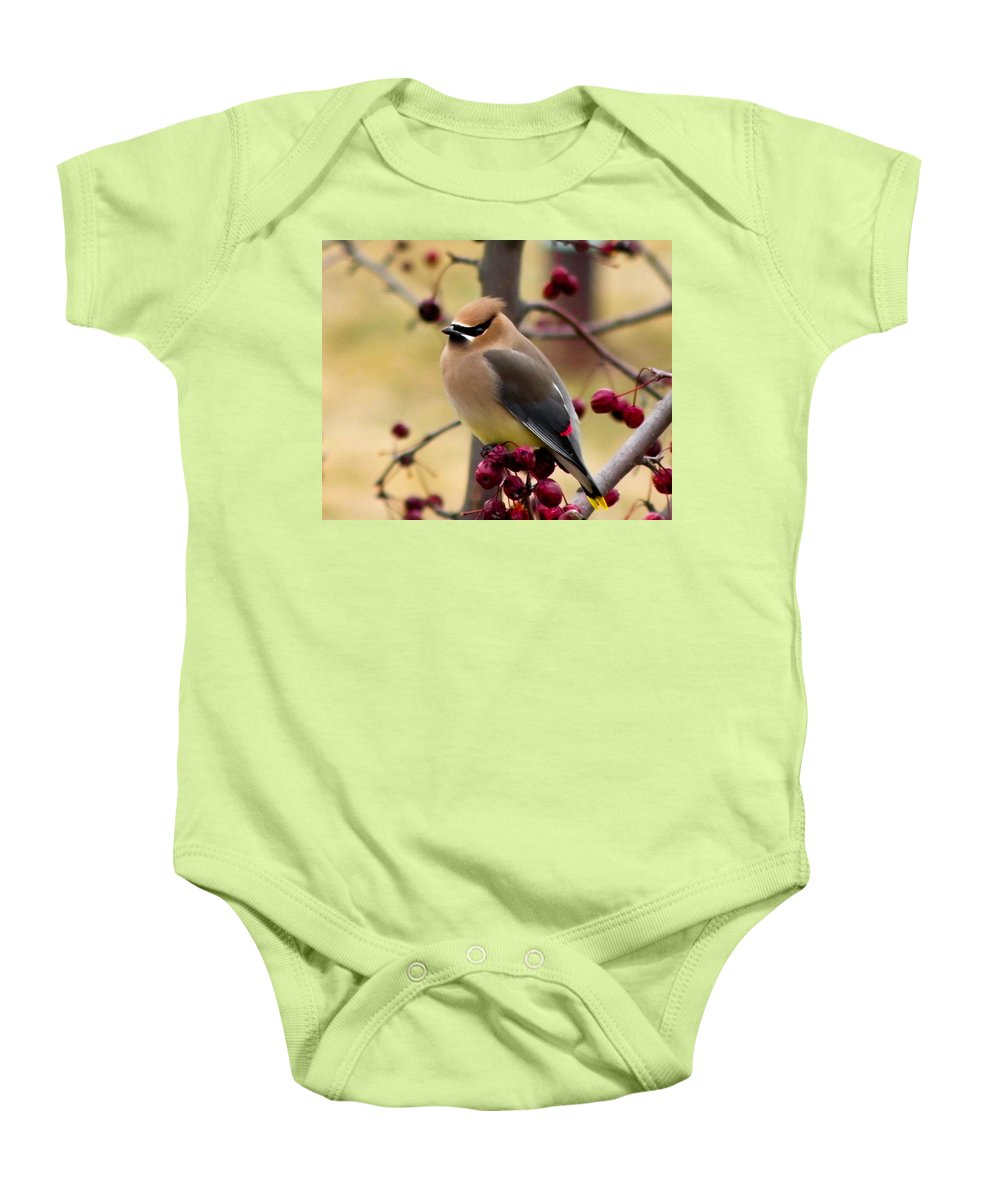 Berry Baby Onesie featuring the photograph Bandit by Trish Tritz