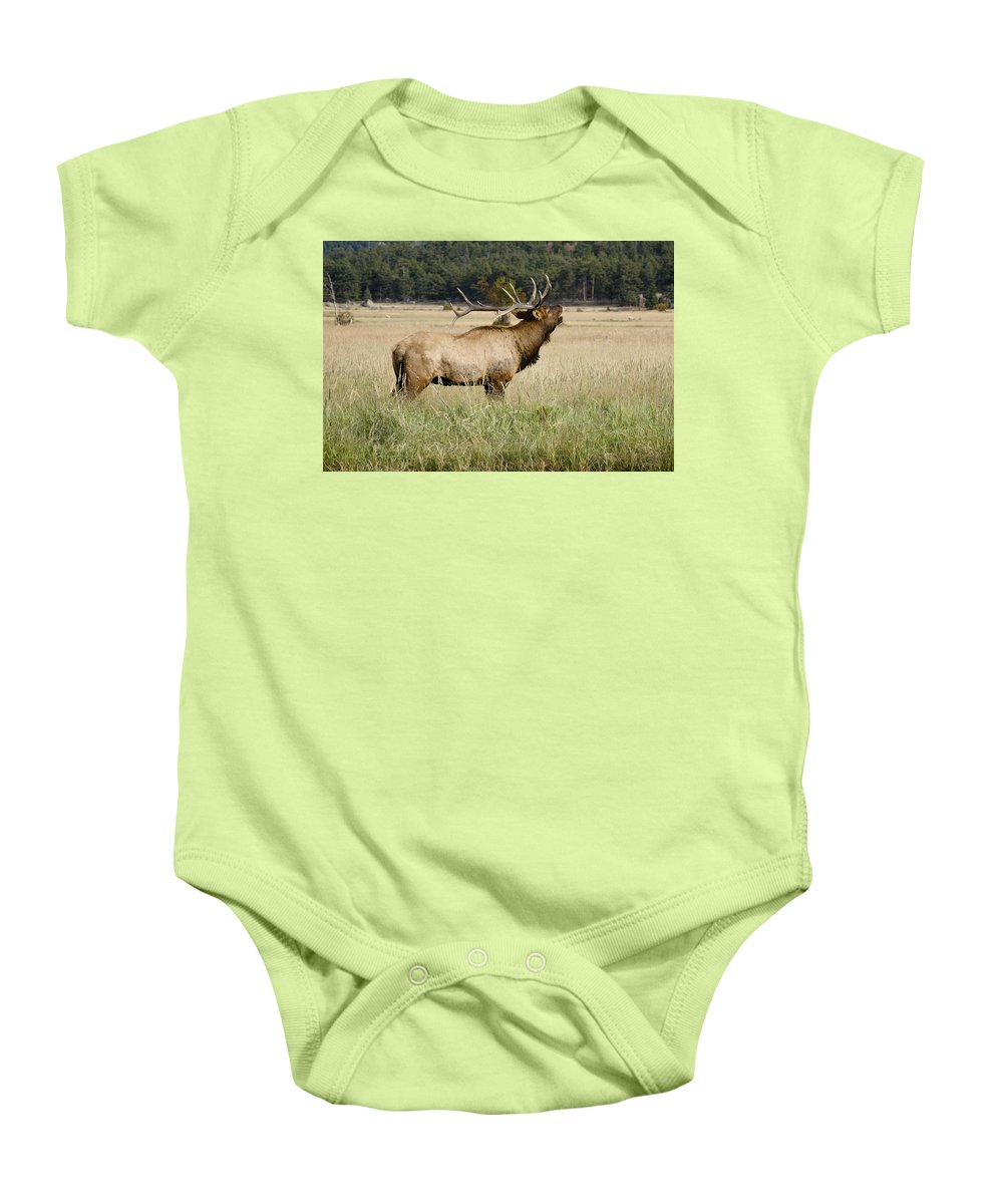 Elk Baby Onesie featuring the photograph Call Of The Wild 2 by Marilyn Hunt
