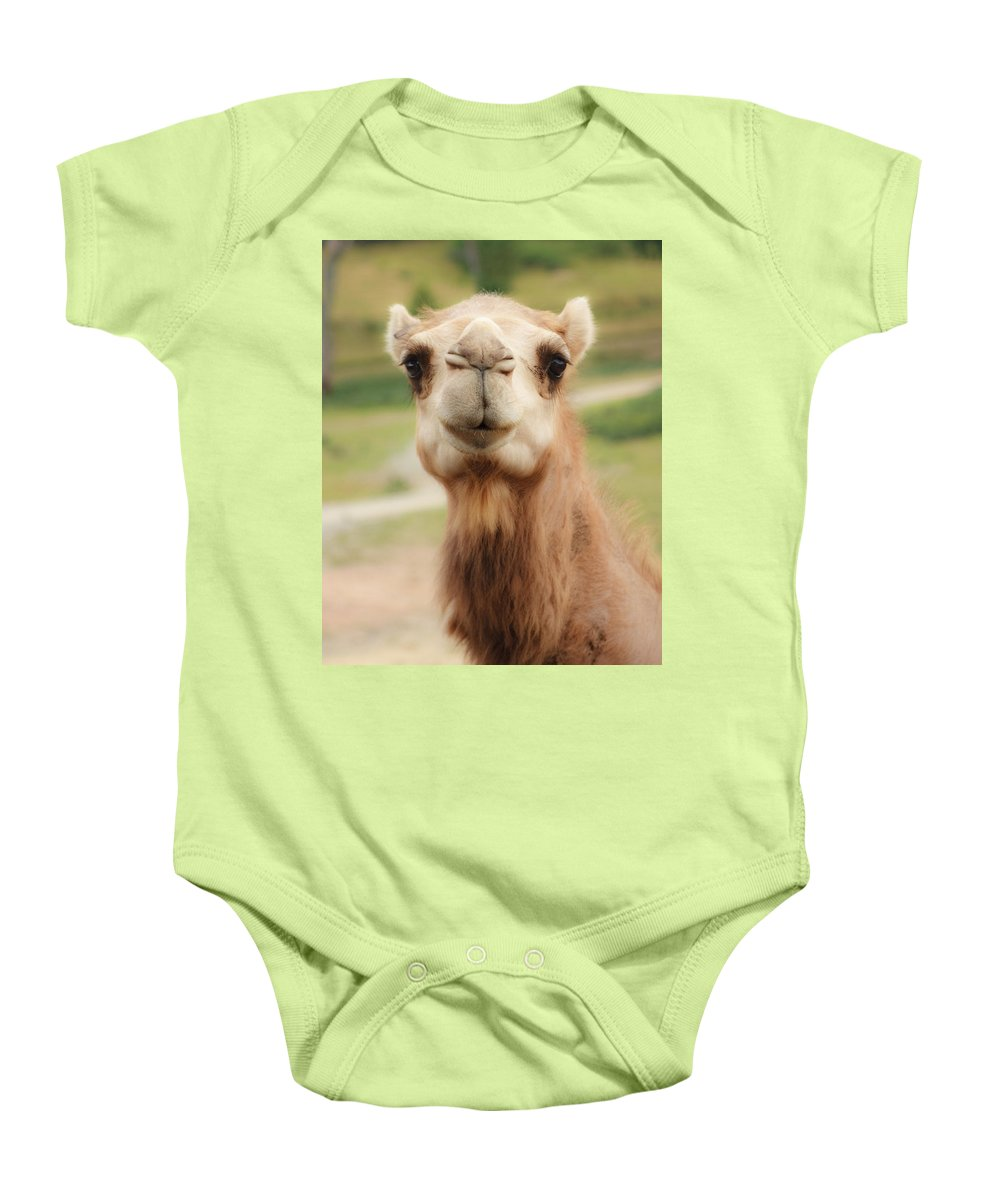 Camel Baby Onesie featuring the photograph Camel Cameo by Michael Clubb