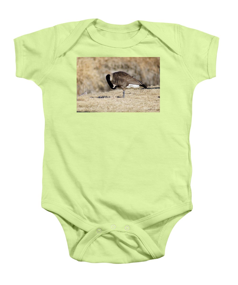 Goose Baby Onesie featuring the photograph Cleaning Up by Lori Tordsen