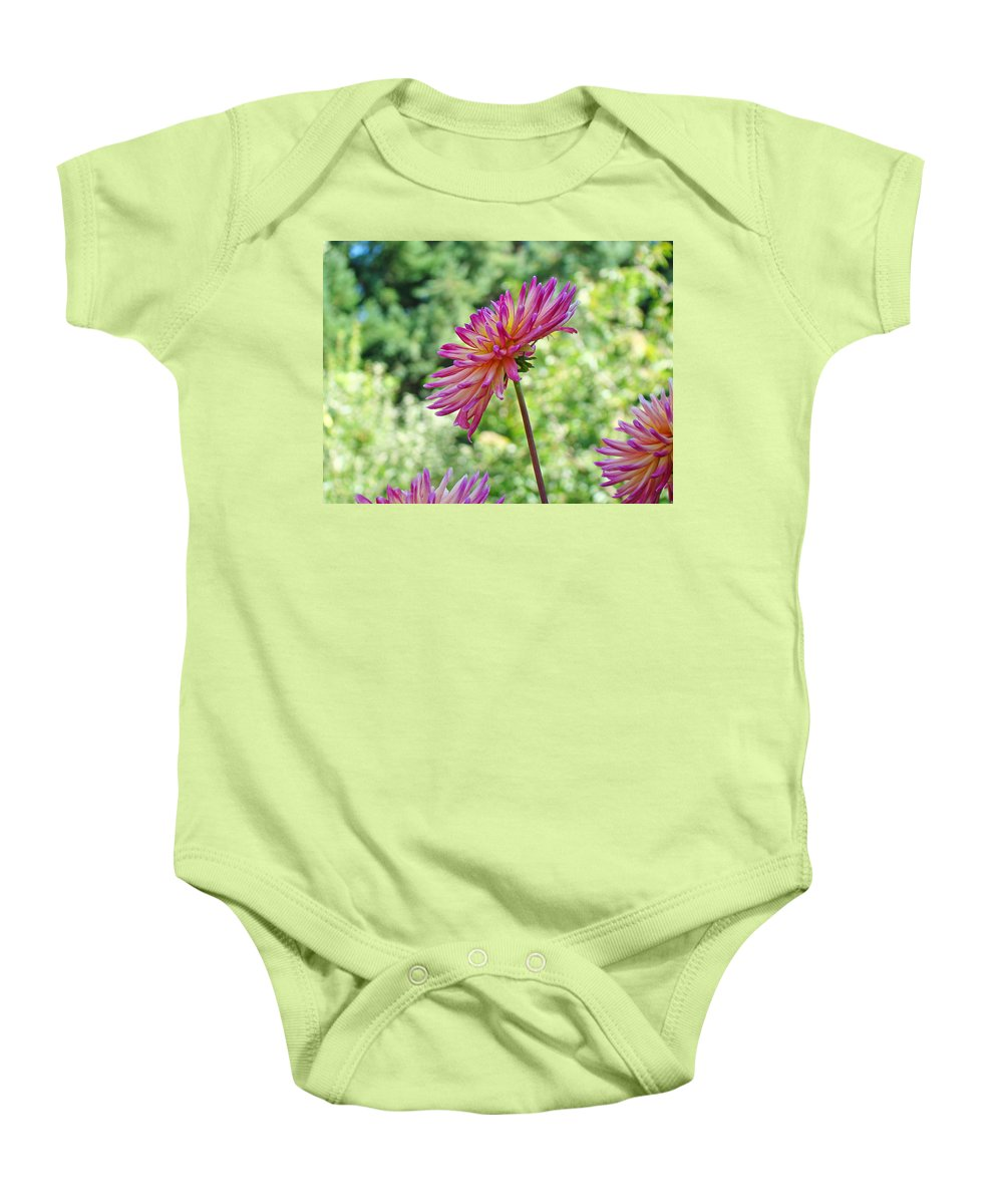 Flowers Baby Onesie featuring the photograph Dahlia Flower Art Print Green Summer Garden by Baslee Troutman