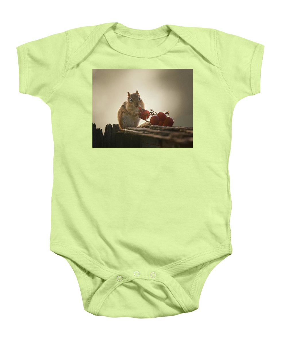 Chipmunk Baby Onesie featuring the photograph Fruit Of The Vine by Susan Capuano