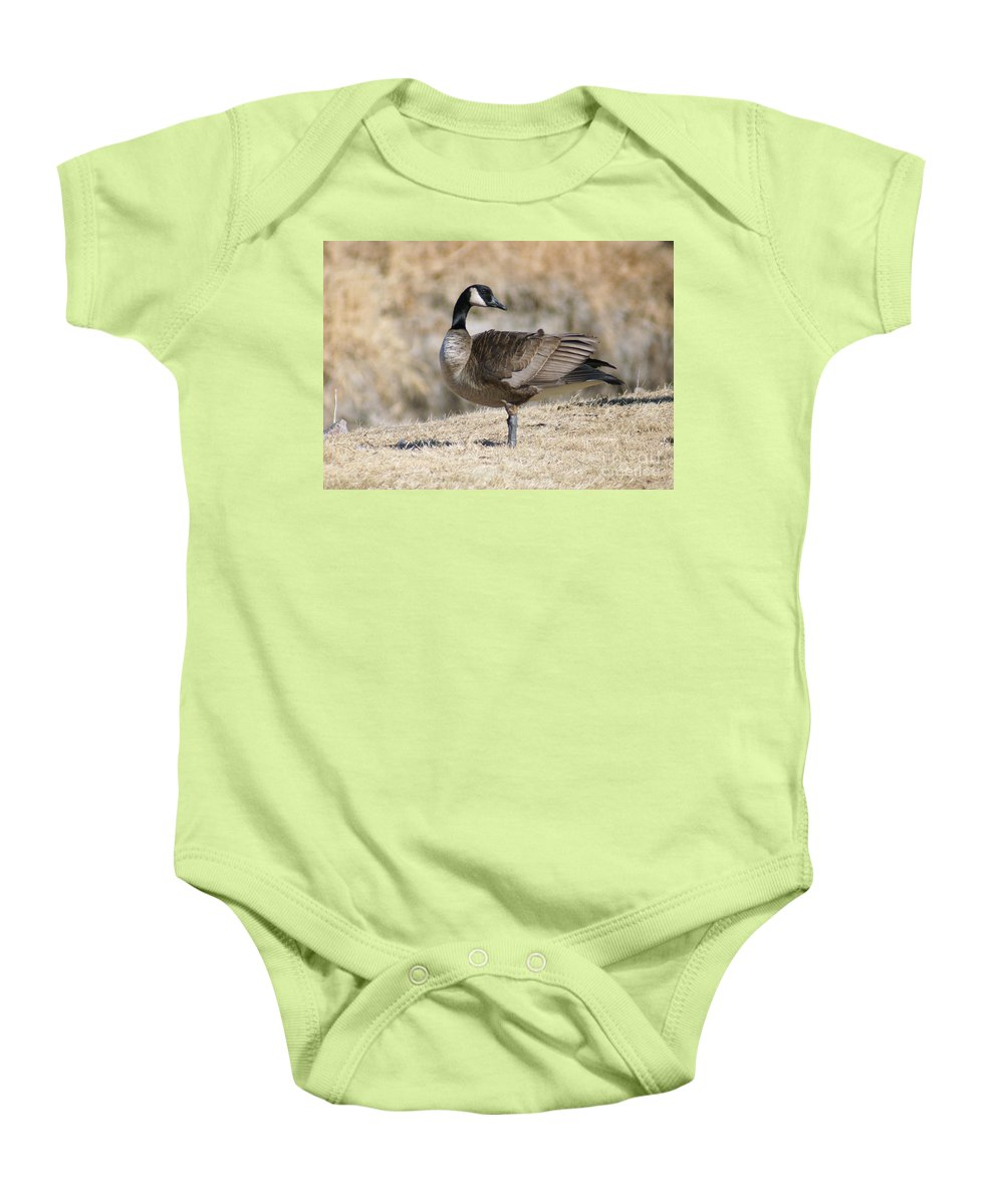 Goose Baby Onesie featuring the photograph Looking Back by Lori Tordsen