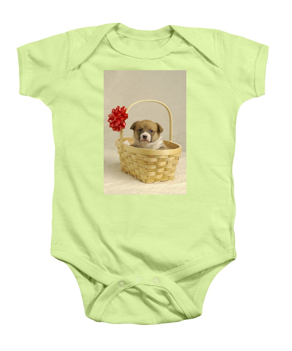 Animal Baby Onesie featuring the photograph Puppy In A Basket by Ron Nickel