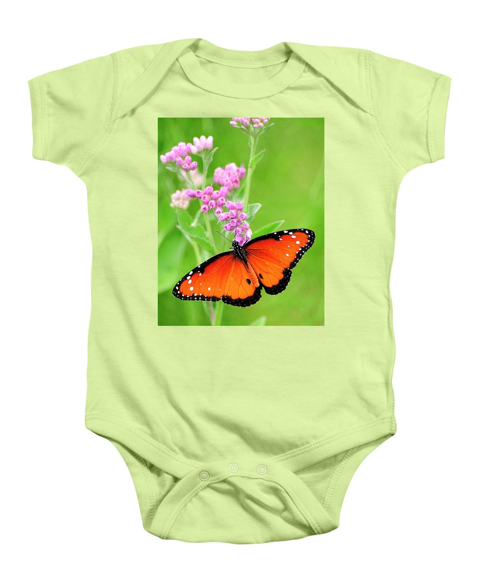 Queen Butterfly Baby Onesie featuring the photograph Queen Butterfly Wings With Pink Flowers by Bill Dodsworth