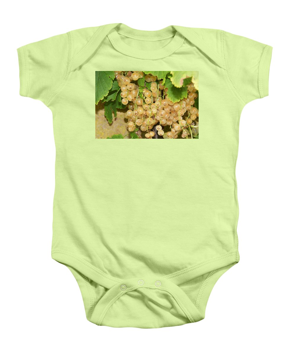 Berries Baby Onesie featuring the photograph Ripe Berries by David Resnikoff
